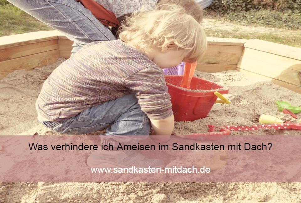Ameisen Im Sandkasten was verhindere ich ameisen im sandkasten mit dach sandkasten